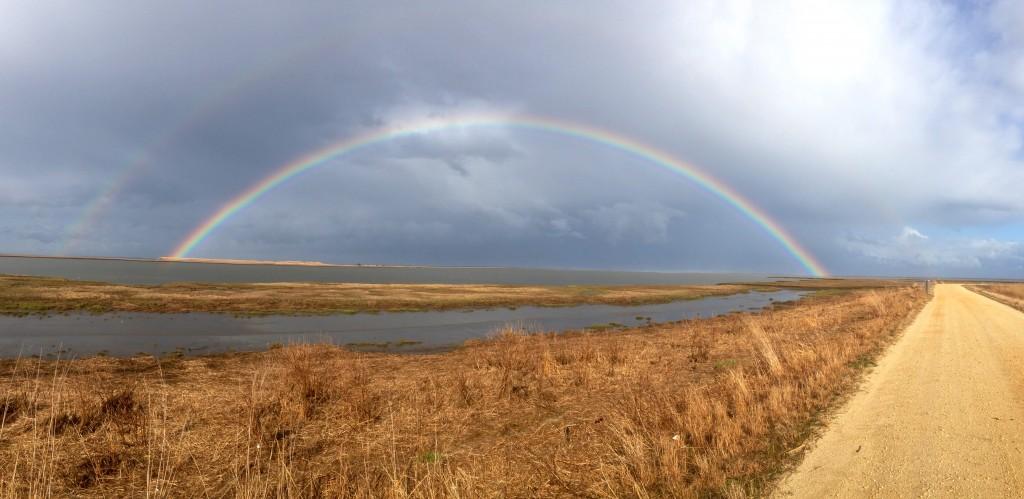 Brig rainbow