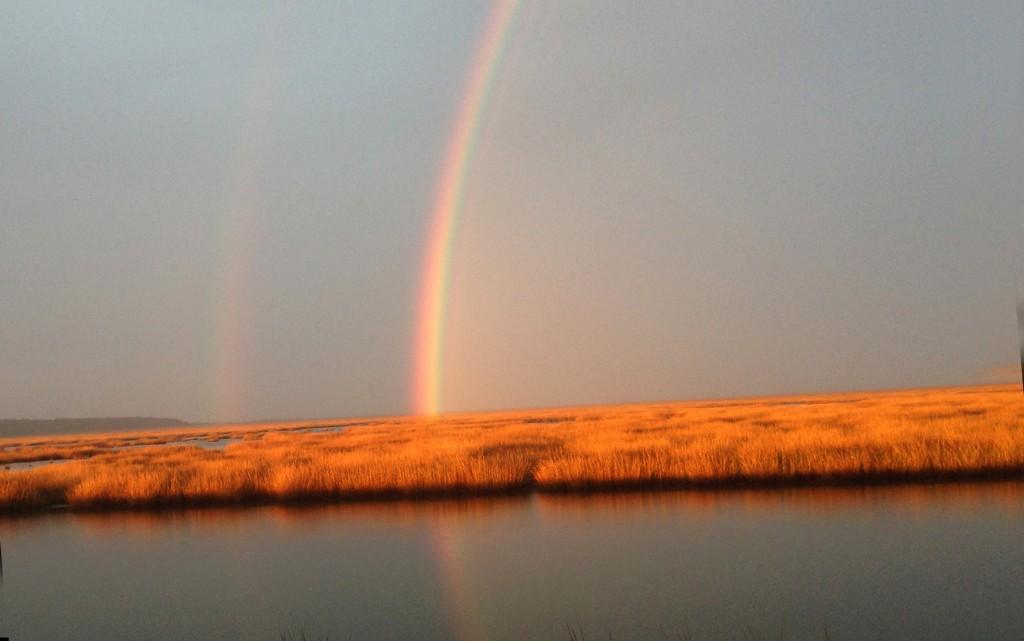 Brig rainbow2015