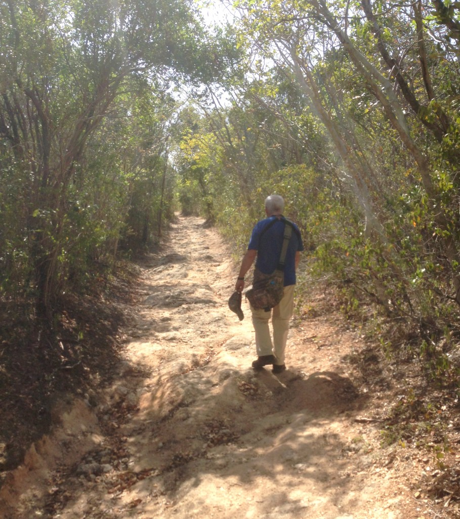 Guanica Dry forest trail