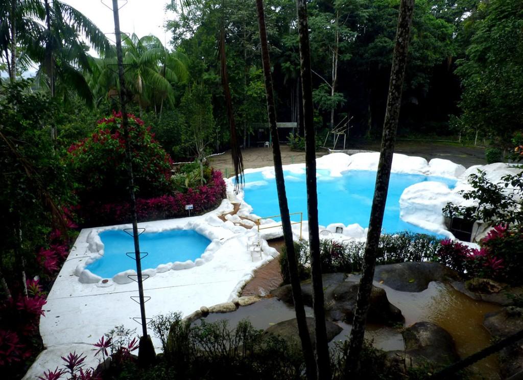 Orquideas pool